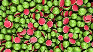Melonen Meer